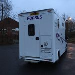 White Horsebox with Purple Graphics