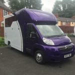 Purple and White Horsebox Front View